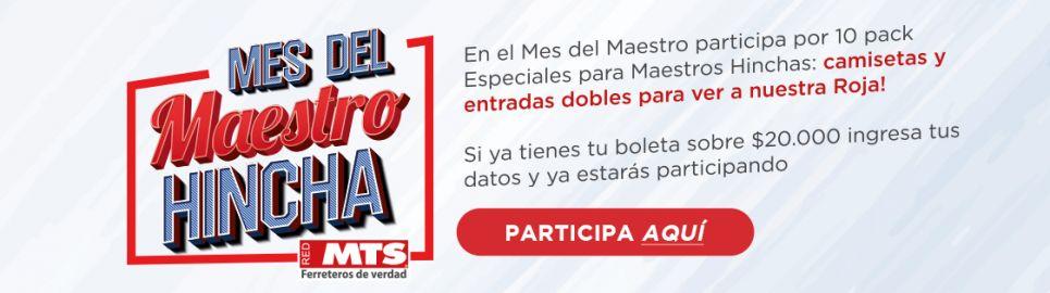 """Bases Concurso """"Mes del Maestro Hincha"""""""